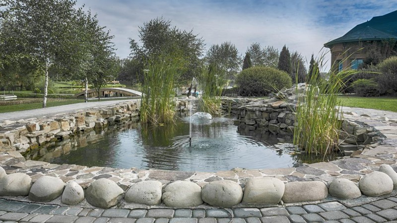 Four Ways Your Pond Loses Water and You Might Not Know It