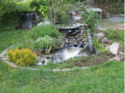 Tips to Select a Pond Pump
